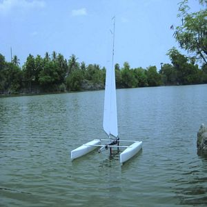 Venom R - Mini40 Catamaran